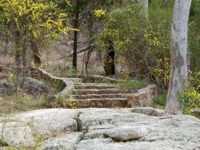 Woolshed Falls Track