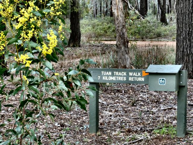 Tuan Track Walk