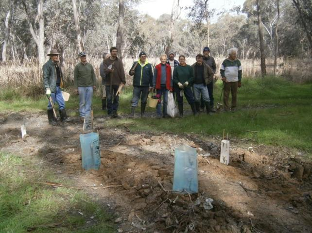 Frogs Hollow revegetation